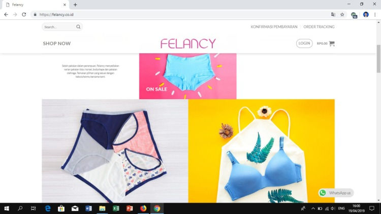 Tampilan website Felancy